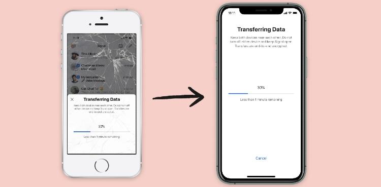 Signal iOS transfer data